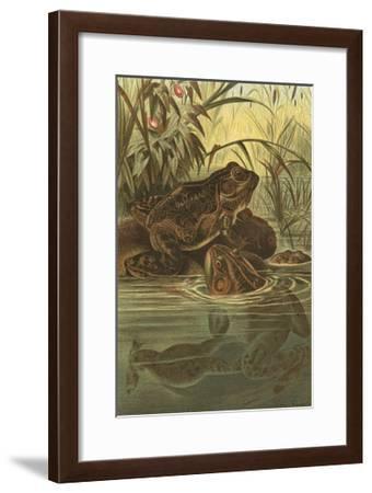 Pond Frogs- Prang-Framed Art Print
