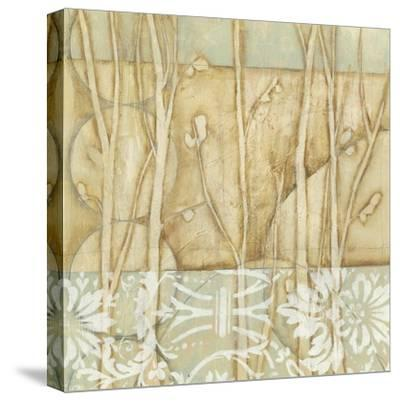 Small Willow and Lace IV-Jennifer Goldberger-Stretched Canvas Print