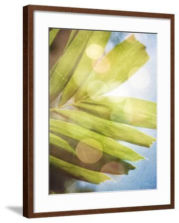 Tropical Daydream I-Emily Robinson-Framed Photographic Print
