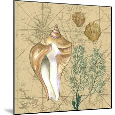 Coastal Map Collage III-Vision Studio-Mounted Art Print
