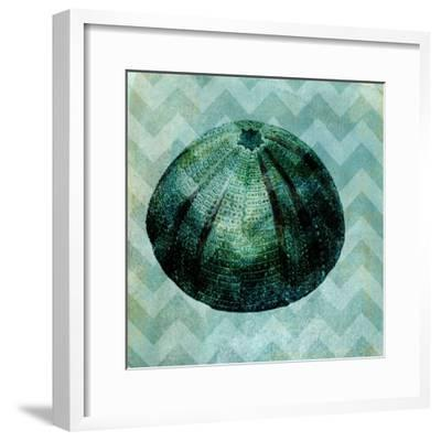 Chevron Shell IV-Vision Studio-Framed Art Print