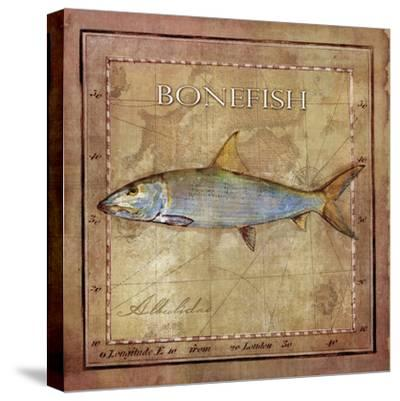 Ocean Fish IV-Beth Anne Creative-Stretched Canvas Print