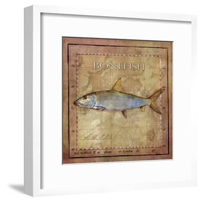 Ocean Fish IV-Beth Anne Creative-Framed Art Print