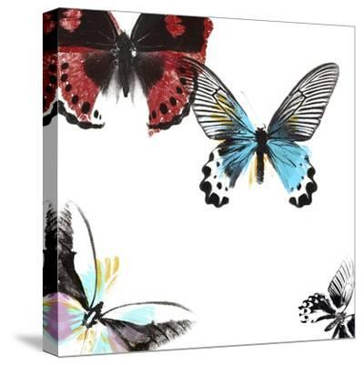 Butterflies Dance I-A. Project-Stretched Canvas Print