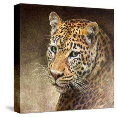 Leopard-Chris Vest-Stretched Canvas Print