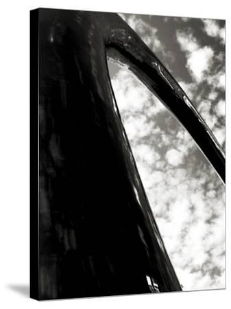 Sky Sculpture I-Tang Ling-Stretched Canvas Print
