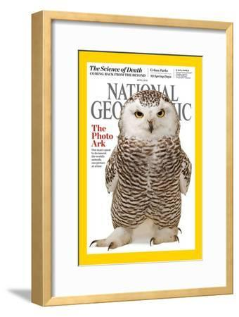 Cover of the April 2016 National Geographic Magazine-Joel Sartore-Framed Photographic Print