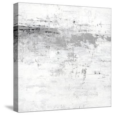 Blizzard I-PI Studio-Stretched Canvas Print