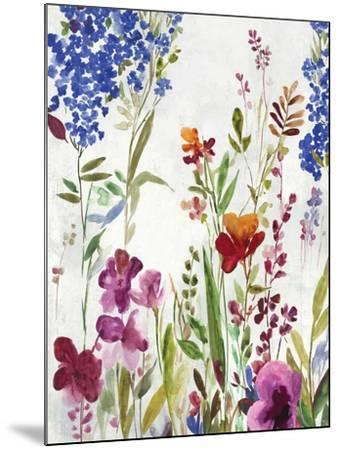 Spring Field-Asia Jensen-Mounted Art Print