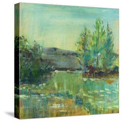 Beautiful Life-Sue Schlabach-Stretched Canvas Print