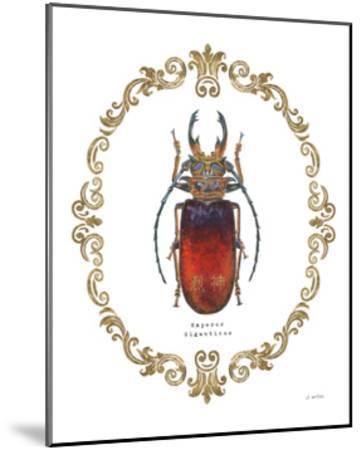 Adorning Coleoptera I-James Wiens-Mounted Art Print