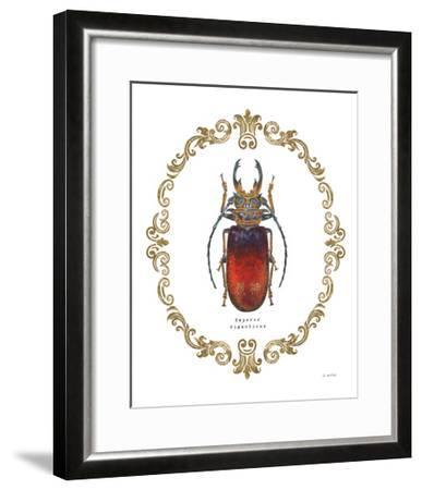 Adorning Coleoptera I-James Wiens-Framed Art Print