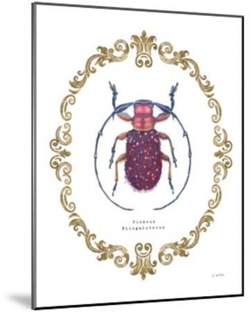 Adorning Coleoptera II-James Wiens-Mounted Art Print