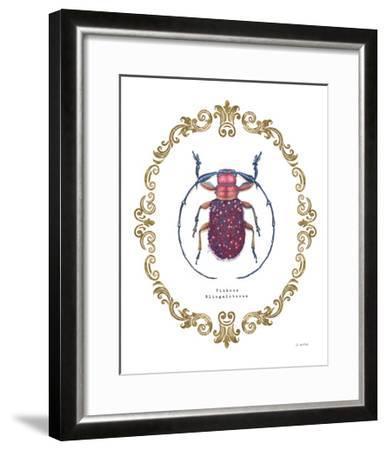 Adorning Coleoptera II-James Wiens-Framed Art Print