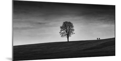 In the Distance-Aledanda-Mounted Art Print