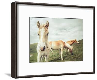 Three Buddies-Aledanda-Framed Art Print
