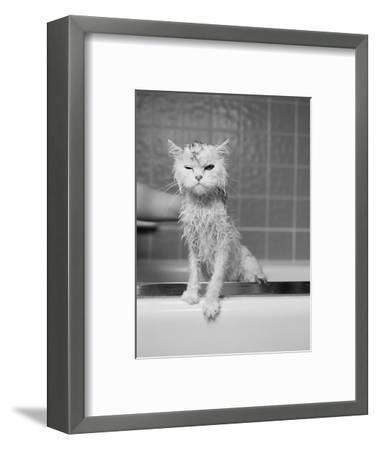 Bert's Bath-James Flad-Framed Photographic Print