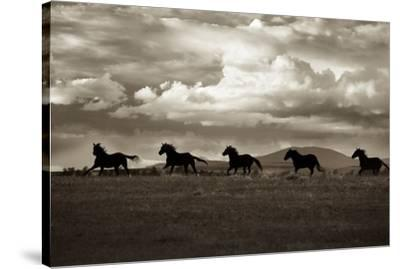 Racing the Clouds-Lisa Dearing-Stretched Canvas Print