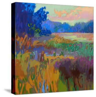 Pastoral XV-Jane Schmidt-Stretched Canvas Print
