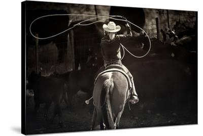 American Cowgirl-Lisa Dearing-Stretched Canvas Print