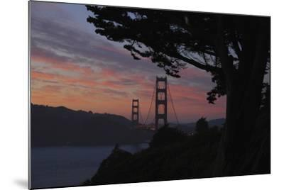 San Francisco, California-Anna Miller-Mounted Photographic Print