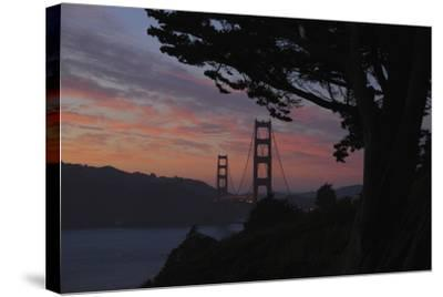 San Francisco, California-Anna Miller-Stretched Canvas Print