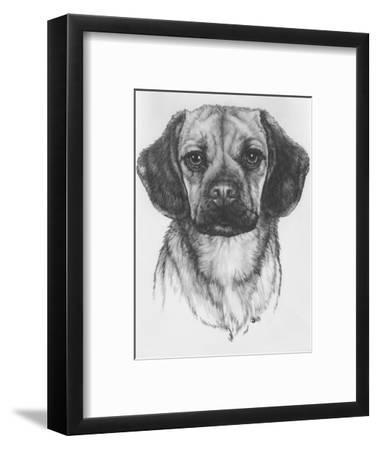 Mr. Puggle-Barbara Keith-Framed Giclee Print