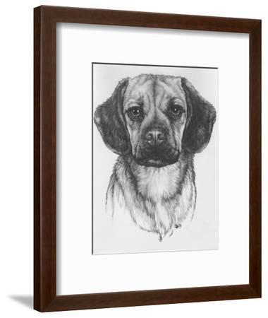 Mr. Puggle-Barbara Keith-Framed Giclee Print