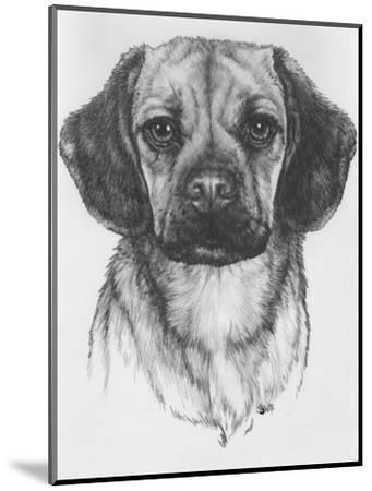 Mr. Puggle-Barbara Keith-Mounted Giclee Print
