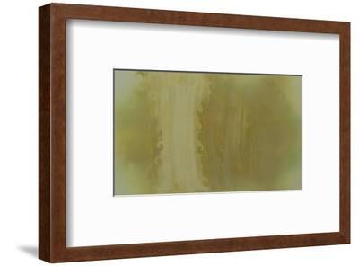 NIRVANA?Wall Painting that Nature Made-Masaho Miyashima-Framed Giclee Print