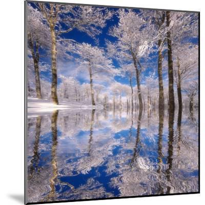 Dream in Blue-Philippe Sainte-Laudy-Mounted Premium Photographic Print