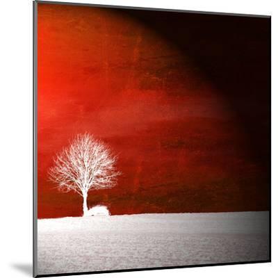 Sensation in Red-Philippe Sainte-Laudy-Mounted Premium Photographic Print