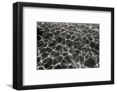 Underwater 2-Lee Peterson-Framed Photographic Print