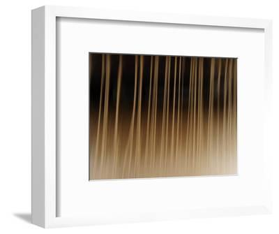 Close Up of Thread on a Loom-Raul Touzon-Framed Photographic Print
