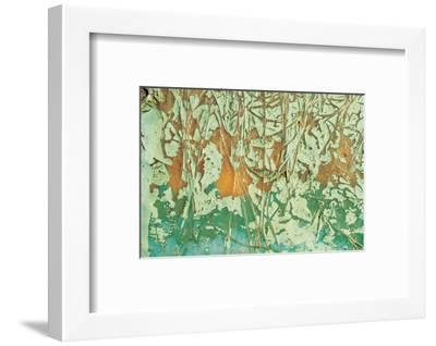 Paint and Fibres on Wood--Framed Photographic Print