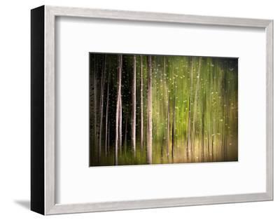 On a Rainy Day-Ursula Abresch-Framed Photographic Print