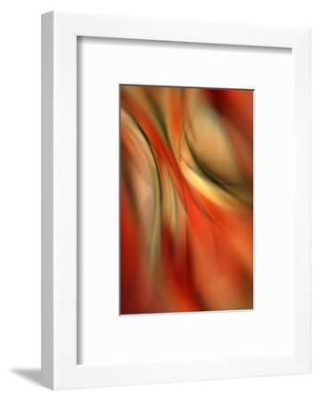 Happy New Year-Ursula Abresch-Framed Photographic Print