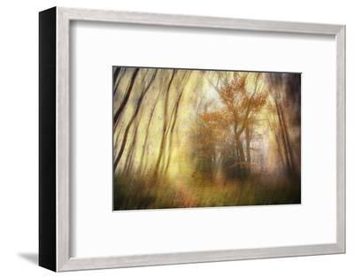 Meet-Viviane Fedieu Daniel-Framed Photographic Print