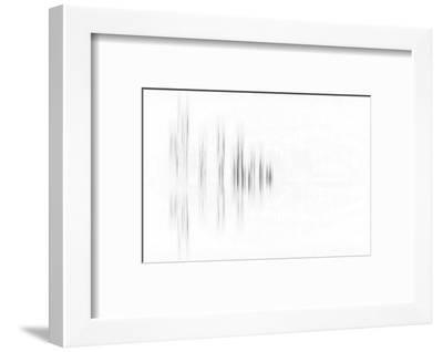 Black Trees-Marco Carmassi-Framed Photographic Print