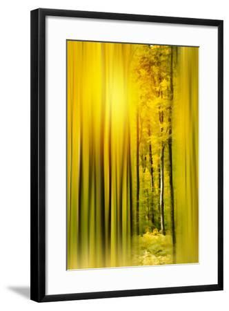 Lost in the Moment-Philippe Sainte-Laudy-Framed Photographic Print
