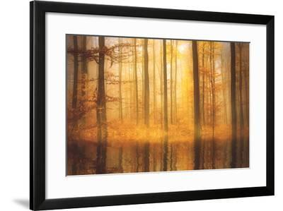 Nature Is Magic-Philippe Sainte-Laudy-Framed Photographic Print