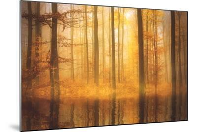Nature Is Magic-Philippe Sainte-Laudy-Mounted Photographic Print