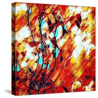 Vines-Ursula Abresch-Stretched Canvas Print