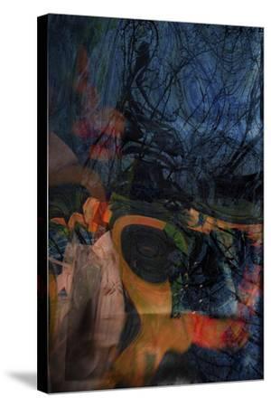 Dreams-Valda Bailey-Stretched Canvas Print