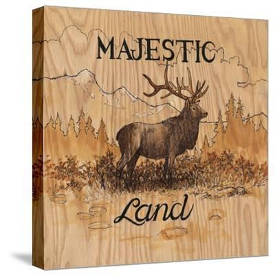 Majestic Land-Arnie Fisk-Stretched Canvas Print