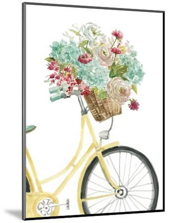 Posies and Pedals-Studio Rofino-Mounted Art Print