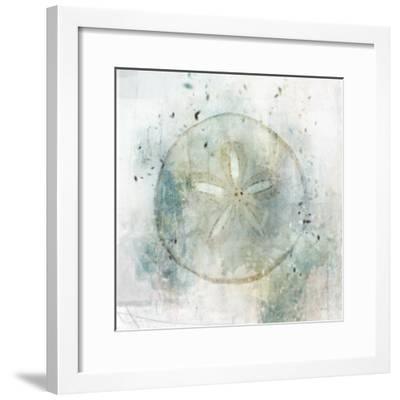 Coastal Mist Sand Dollar-Ken Roko-Framed Art Print