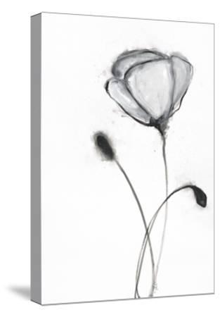Snow Blossom 2-Filippo Ioco-Stretched Canvas Print