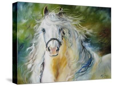 White Cloud the Andlusian Stallion-Marcia Baldwin-Stretched Canvas Print