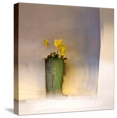 The First Primrose-Valda Bailey-Stretched Canvas Print